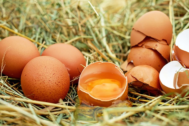 ไข่ไก่รักษาสิวหัวดำได้